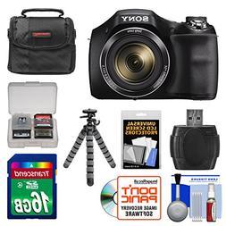 Sony Cyber-Shot DSC-H300 Digital Camera with 16GB Card + Cas