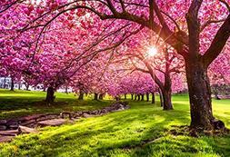 Baocicco Cotton Polyester Beautiful Cherry Flower Trees 5x3f