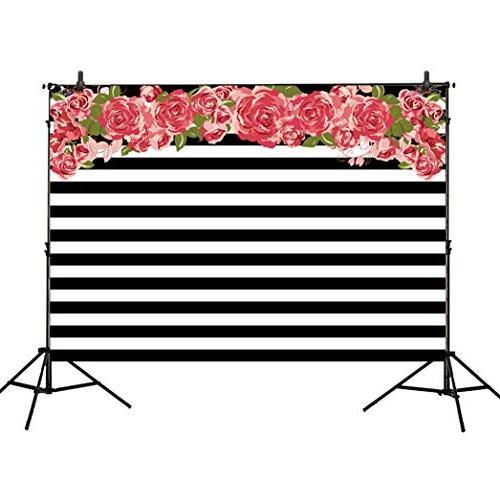 photography backdrops black white stripe